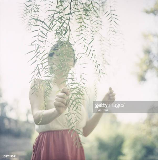 portrait of a woman hiding behind a branch - women being spanked stock photos and pictures