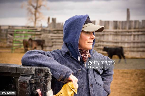 portrait of a woman working on montana ranch - farm woman stock pictures, royalty-free photos & images