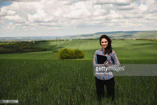portrait of a young and beautiful farmer woman on the wheat field - agronomist stock pictures, royalty-free photos & images