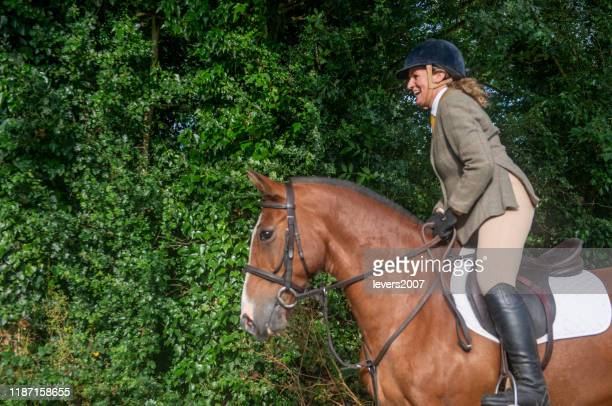 portrait of a young beautiful woman with long brown hair. woman on a horse walk in the forest. - rein stock pictures, royalty-free photos & images