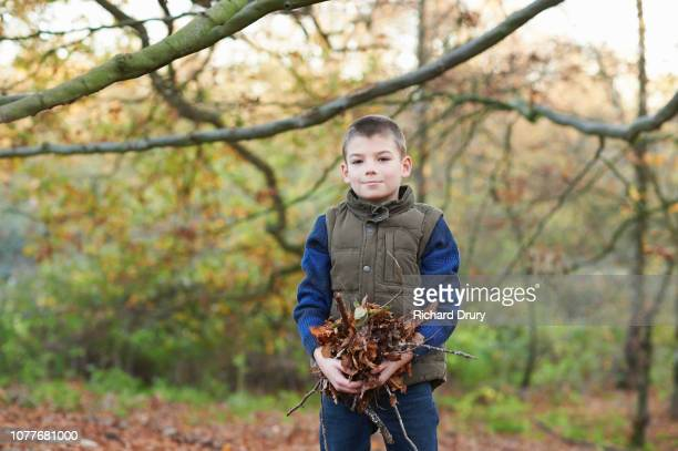 Portrait of a young boy holding leaves in Autumnal woodland