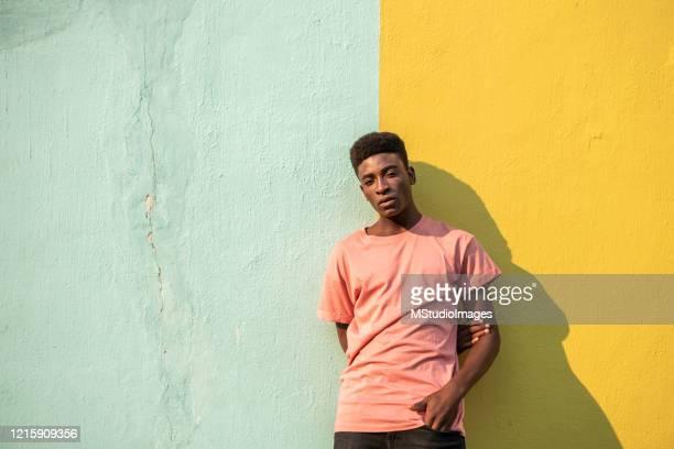 portrait of a young handsome african man. - província do cabo ocidental imagens e fotografias de stock