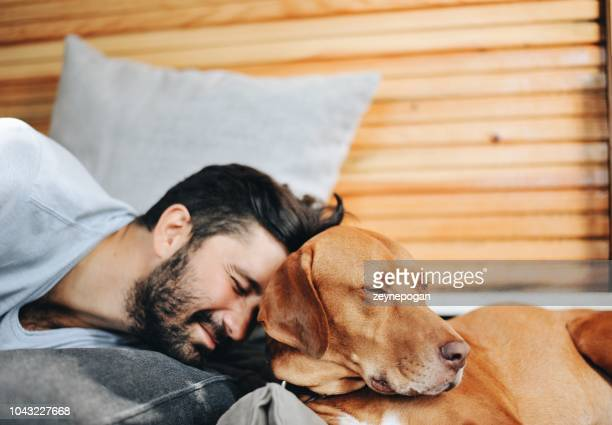 portrait of a young man and his dog - dog turkey stock pictures, royalty-free photos & images