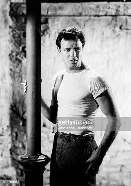 Portrait of actor Marlon Brando as he appears in the film 'A Streetcar Named Desire' for MGM Studios 1951