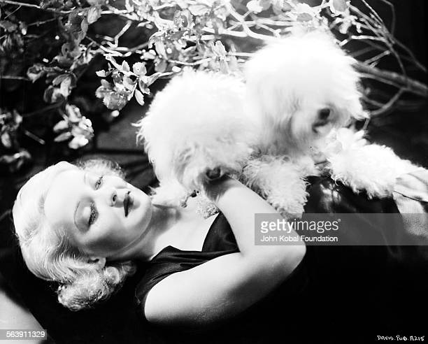 Portrait of actress Bette Davis reclining back on a blanket with two pet dogs for Warner Bros Studios 1932