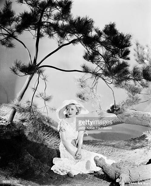 Portrait of actress Bette Davis sitting on a rock outcrop under a tree as she appears in the film 'Cabin in the Cotton' for Warner Bros Studios 1932