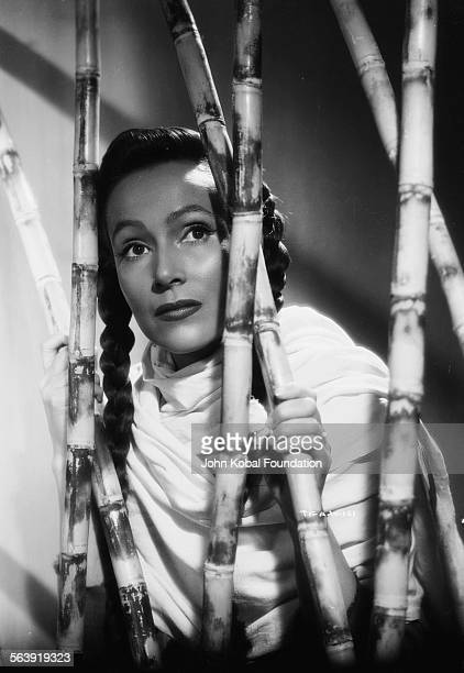 Portrait of actress Dolores del Rio trapped in a bamboo cell as she appears in the film 'The Fugitive' for RKO Pictures 1947