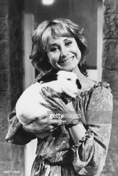 Portrait of actress Felicity Kendal holding a pet rabbit photographed for Radio Times in connection with the television series 'The Mistress'...