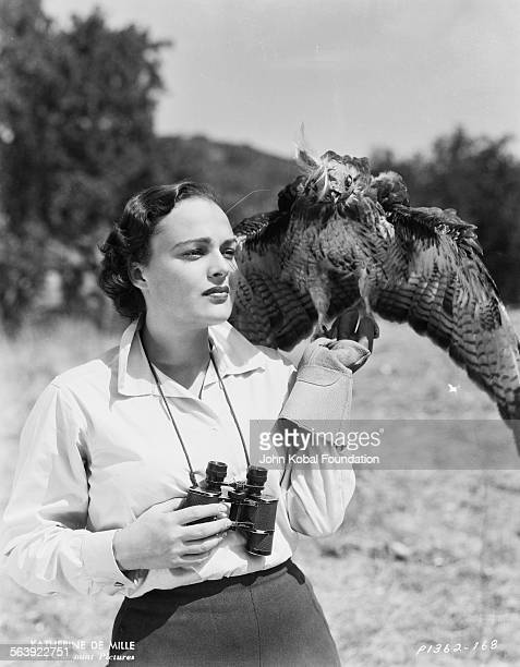 Portrait of actress Katherine DeMille with a hawk on her arm daughter of famous filmmaker Cecil B DeMille for Paramount Pictures 1935