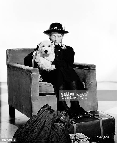 Portrait of actress Marion Davies sitting in an armchair with a pet dog and a suitcase at her feet as she appears in the film 'Peg o' My Heart' for...
