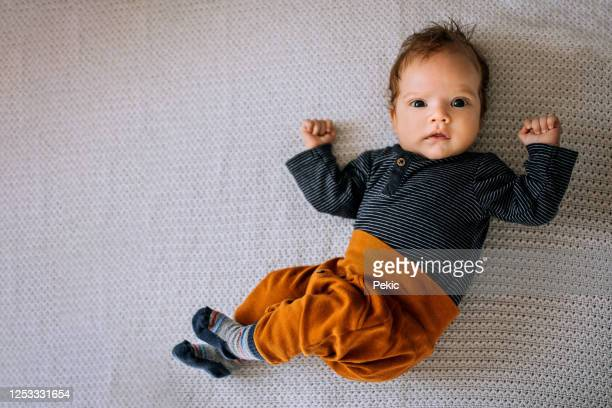 portrait of adorable baby boy - one baby boy only stock pictures, royalty-free photos & images