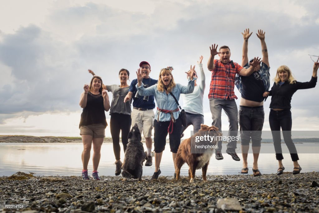 Portrait of adult family with dogs jumping on shingle beach, Maine, USA : Stock Photo