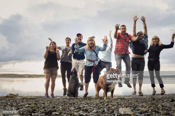 portrait of adult family with dogs jumping on shingle beach, maine, usa - waterkant stockfoto's en -beelden