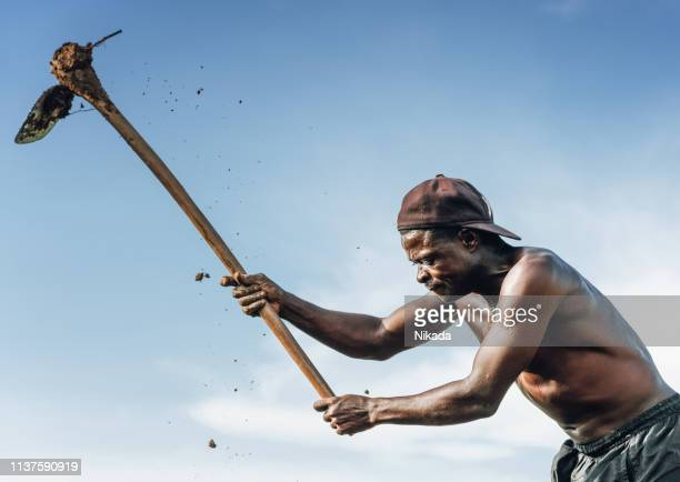 portrait of african rural farmer in malawi - poor africans stock pictures, royalty-free photos & images