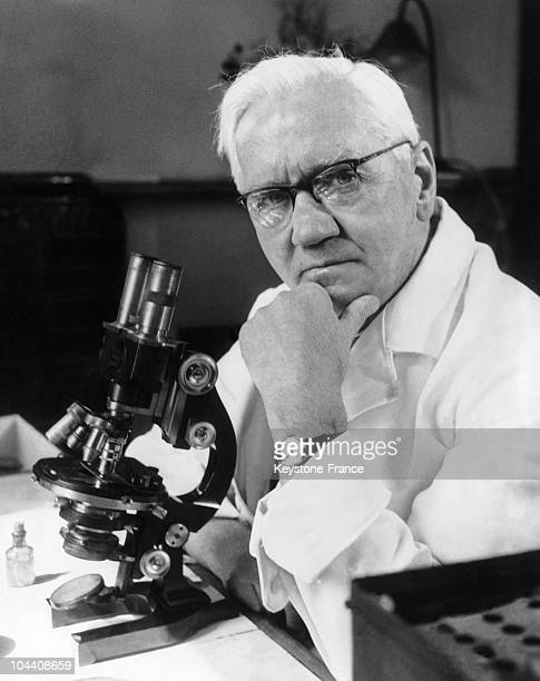Portrait of Alexander FLEMING working in his laboratory in London SainteMarie hospital The penicillin finder died on March 11 1955 at the age of 73...