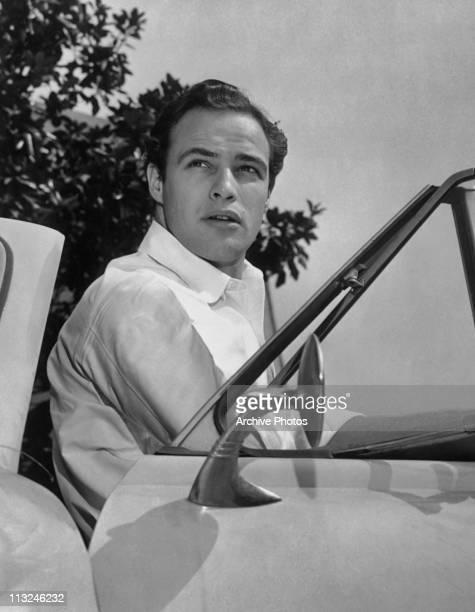 Portrait of American actor Marlon Brando circa 1952