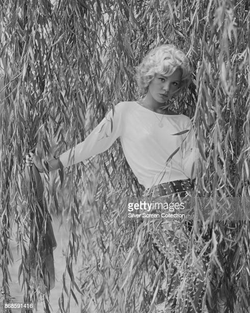 Portrait of American actress Tuesday Weld as she poses among the leaves of a weeping willow tree 1960s