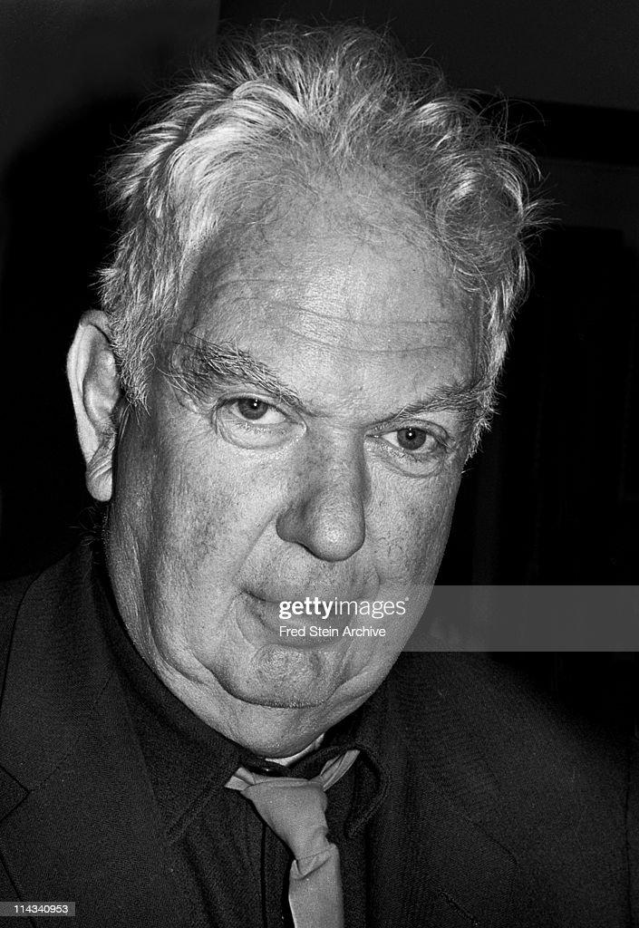 Portrait Of Alexander Calder : Fotografía de noticias