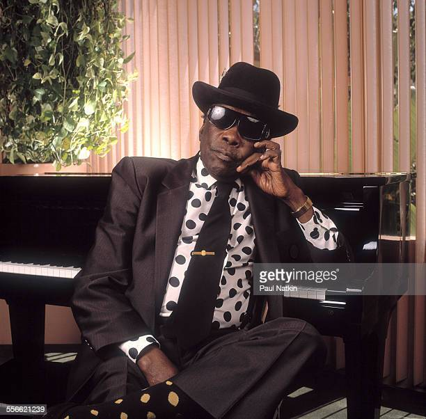 Portrait of American Blues musician John Lee Hooker at the Sunset Marquis Hotel Los Angeles California April 2 1991