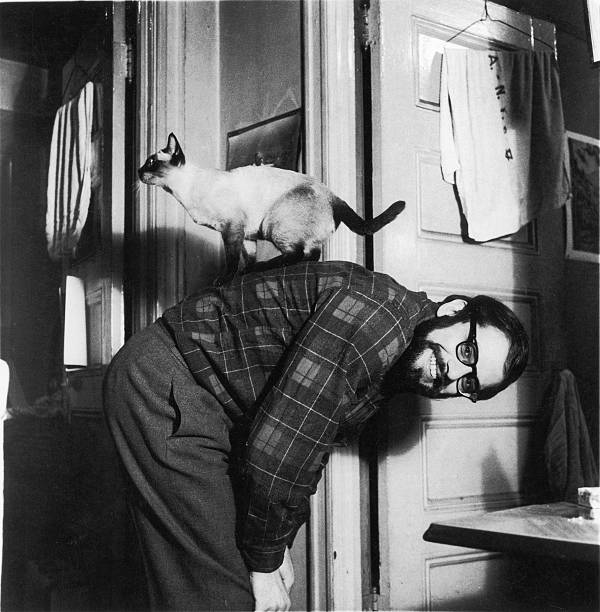 Allen Ginsberg & Cat At Home Wall Art