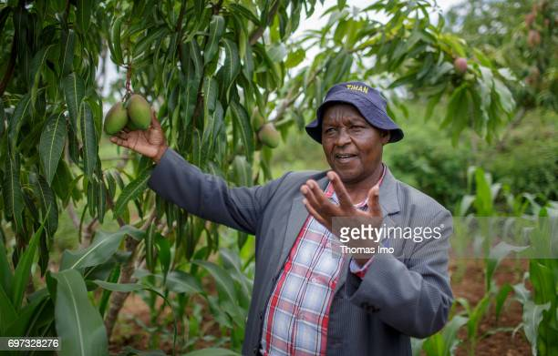 Portrait of an African farmer at his mango farm on May 19 2017 in Ithanka Kenya