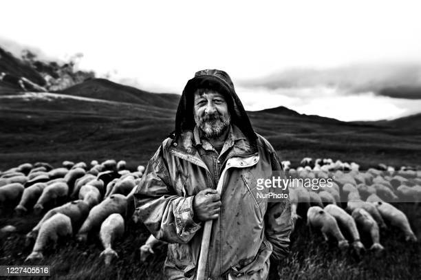 Image was converted to black and white) Portrait of an Italian shepherd with his flock of sheep in the Campo Imperatore Plain, in Abruzzo Italy, on...
