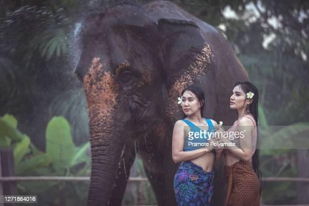 portrait of asian beautiful woman new generation water injection with elephants in thai traditional costume - new generation stock pictures, royalty-free photos & images