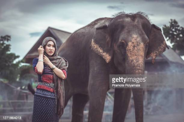 portrait of asian beautiful woman new generation with elephants in thai traditional costume - new generation stock pictures, royalty-free photos & images