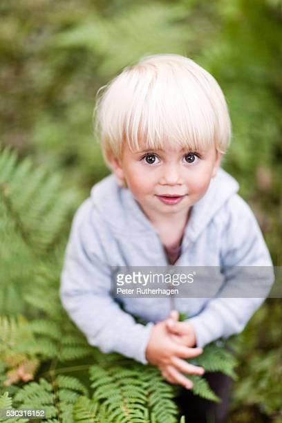 Portrait of baby boy in ferns
