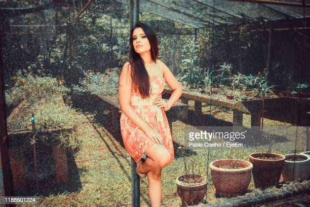 portrait of beautiful woman standing against greenhouse - man made structure stock pictures, royalty-free photos & images