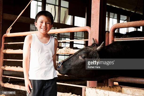portrait of boy and beef cattle
