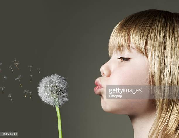Portrait of boy blowing a dandelion head