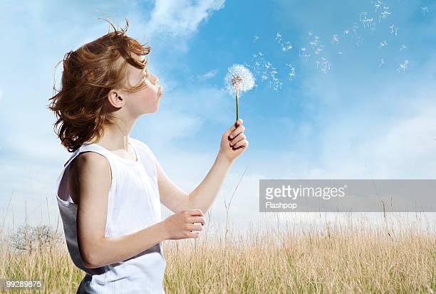 portrait of boy blowing dandelion clock - 吹く ストックフォトと画像