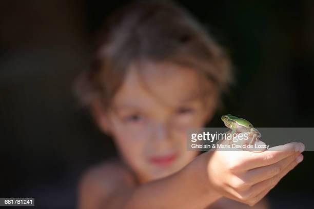 Portrait of boy holding up frog on hand, Buonconvento, Tuscany, Italy