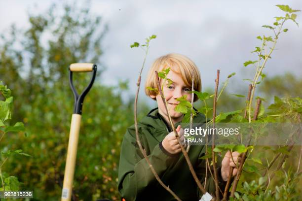 Portrait of boy standing by plant on field
