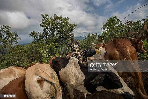 CONTENT] portrait of boy suri tribe with the body painted lead to pasture the herd of cattle
