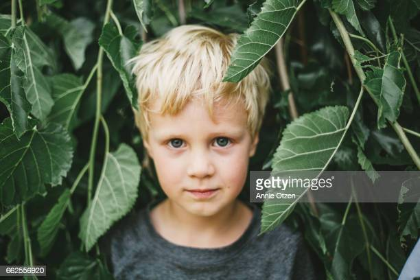 portrait of boy surrounded by leavs - alleen jongens stockfoto's en -beelden