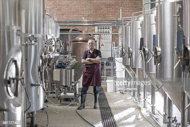 Portrait of brewer in brewery, standing next to stainless steel tanks