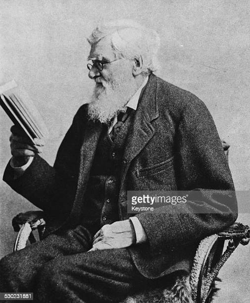 Portrait of British nationalist Alfred Russel Wallace sitting in a chair reading a book circa 1900