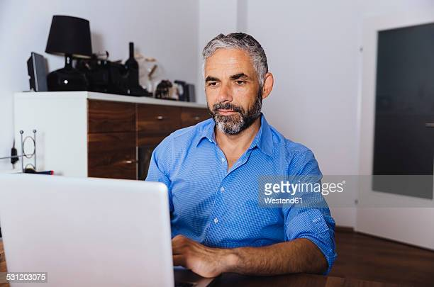 Portrait of businessman working with laptop at home office