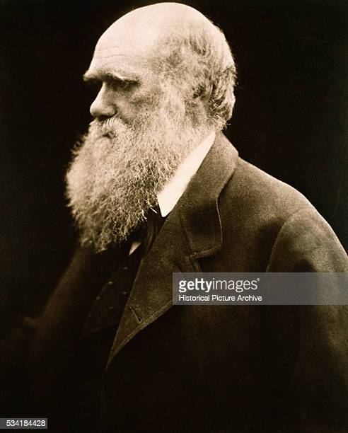Portrait of Charles Darwin by Julia Margaret Cameron