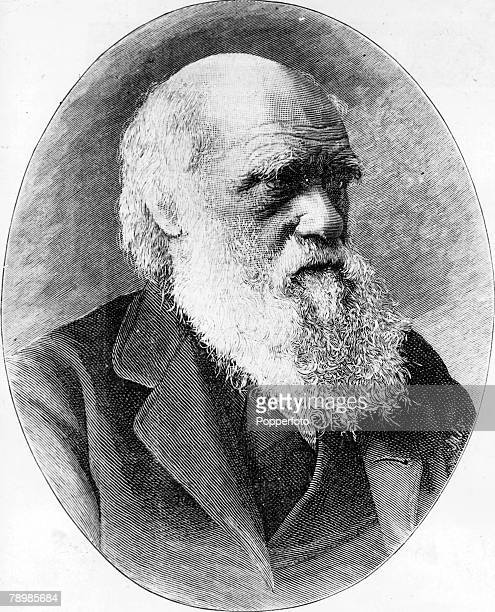A portrait of Charles Darwin English naturalist the originator of the theory of evolution by natural selection