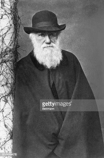 Portrait of Charles Robert Darwin the great naturalist in his middle age Photo circa 1854