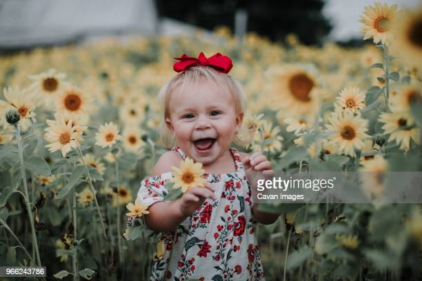 portrait of cheerful baby girl standing amidst sunflower field - hair bow stock pictures, royalty-free photos & images