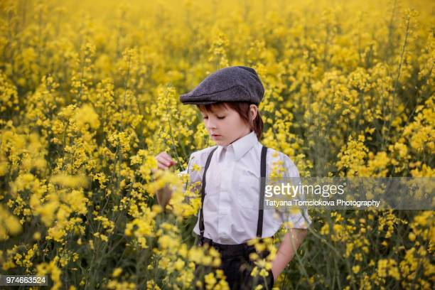 portrait of child playing in oil seed field on sunset - czech hunters stock pictures, royalty-free photos & images