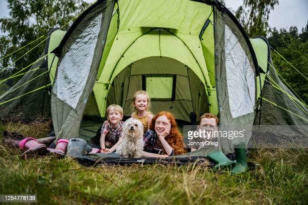 portrait of children and dog lying in tent on camping trip - tent stock pictures, royalty-free photos & images