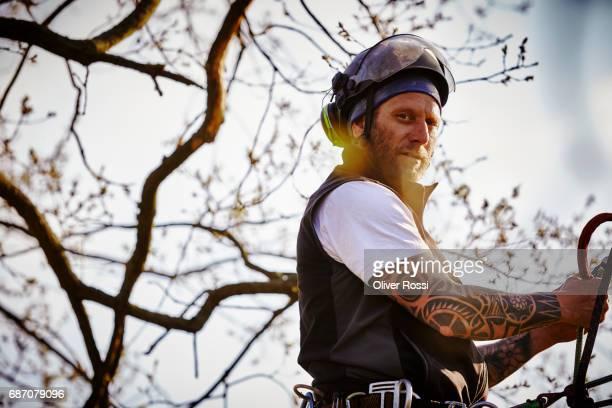Portrait of confident arborist in tree