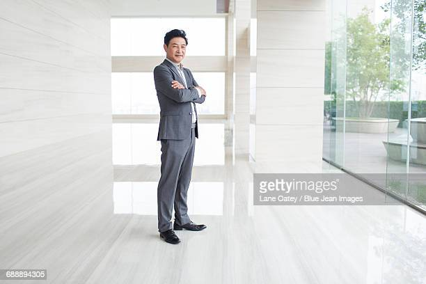 portrait of confident businessman - colletto aperto foto e immagini stock