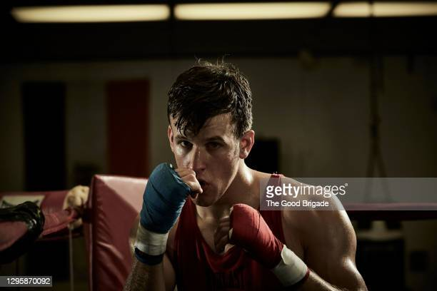 portrait of confident male boxer practicing in boxing ring at health club - boxing stock pictures, royalty-free photos & images