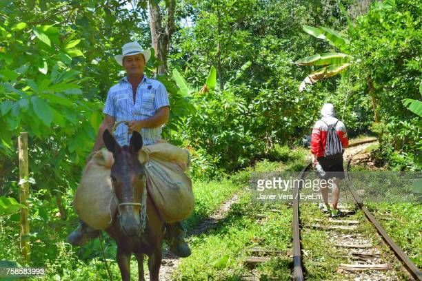 Portrait Of Confident Man Riding Donkey By Railroad Tracks In Forest